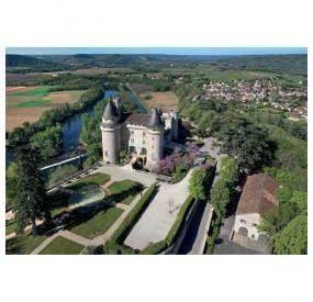 Vignoble château de Mercuès