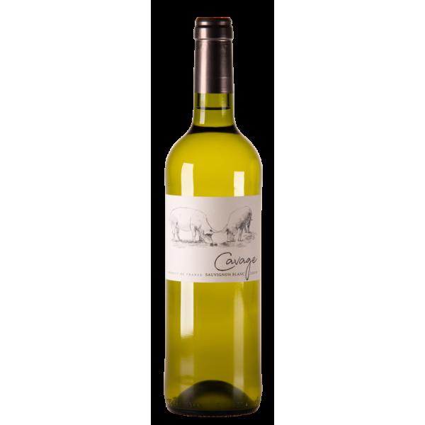 Cavage sauvignon blanc by Georges Vigouroux