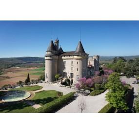 Vignoble occitanie