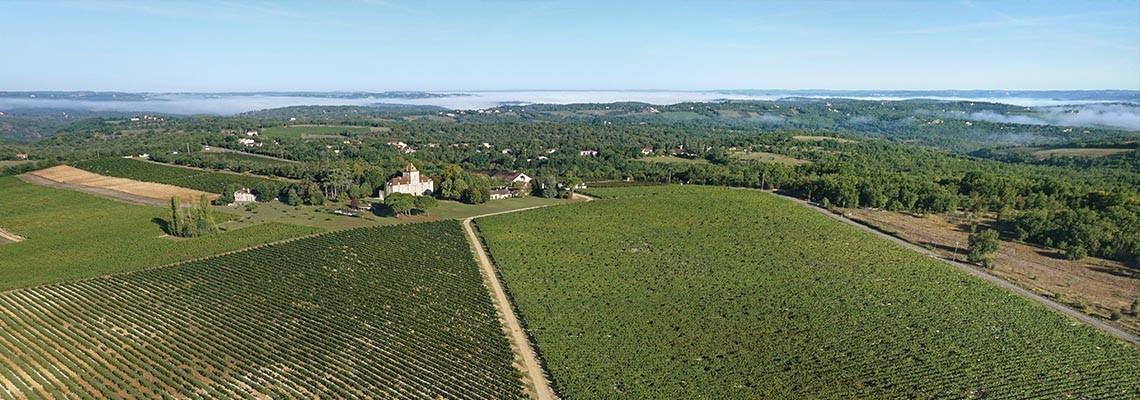 Nos vins Malbec AOC Cahors : achat Vin de Chateaux - Atrium Vigouroux