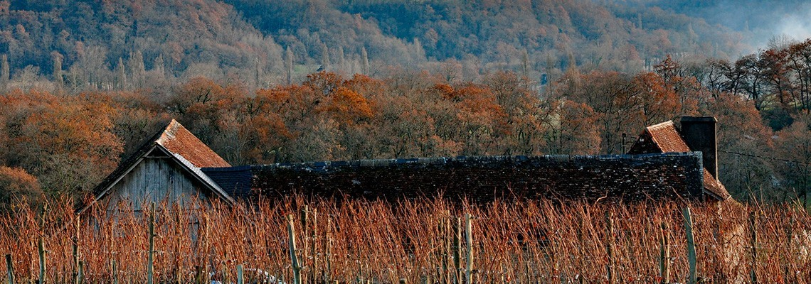 AOC Jurançon, vin blanc moelleux Gros Manseng - Atrium Vigouroux