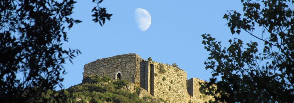 Vins du Languedoc Roussillon AOC - Atrium Vigouroux